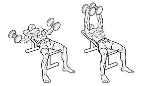 Dumbbell flat fly