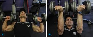 Twisting Dumbbell Bench Press