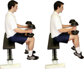 Seated Calf Raises