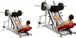 leg press calf raises