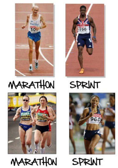 Marathon Runner's Body Versus Sprinter's Body