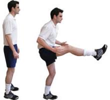 Straight Leg Kicks