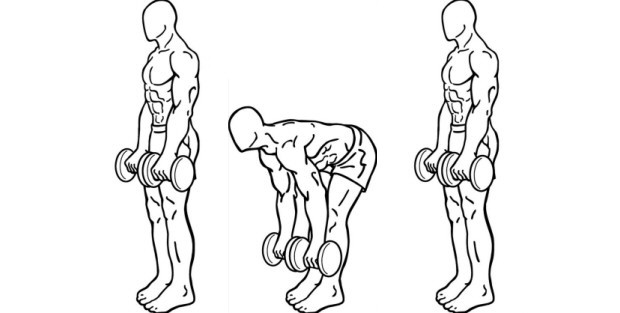 Dumbbell Deadlifts