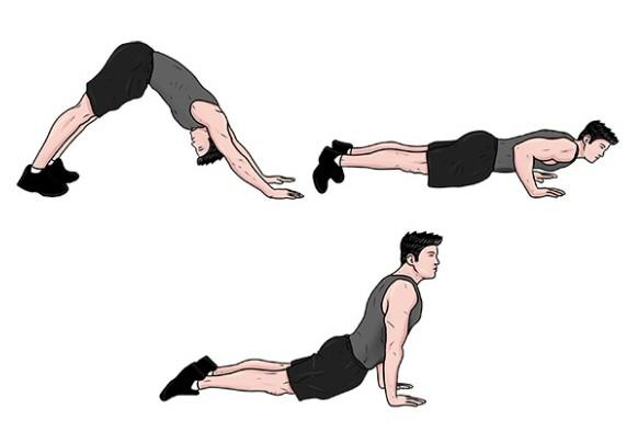 Judo Pushup